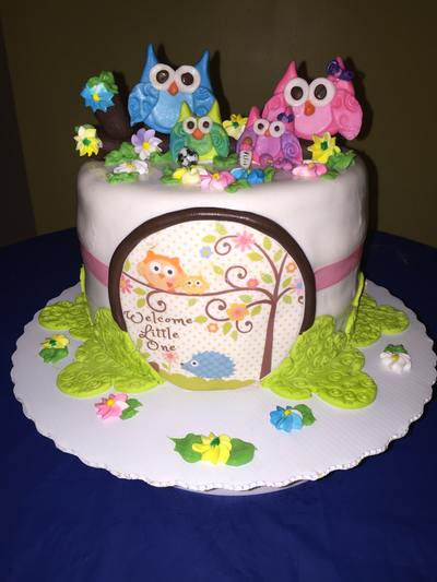 Social Event Owl Baby Girl Sprinkle